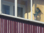 Балкон-серви